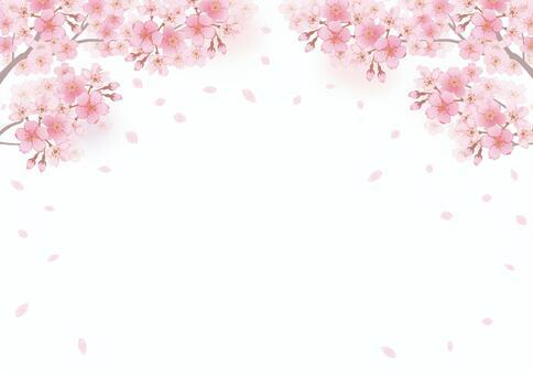 櫻桃框架22
