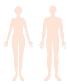 Human body Male and female body flat illustration
