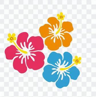 ハワイアン植物04