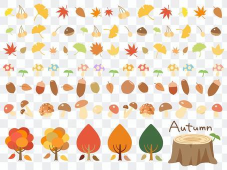 Autumn leaves _ nuts _ mushroom line