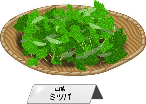 고추 야생초 산채 요리 재료 원숭이