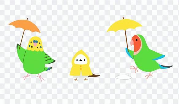 Okame_Kozakura_Shimaenaga_Umbrella_Sanpo
