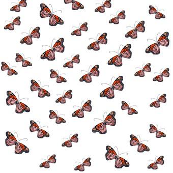 Butterfly Monarch Butterfly Ranbu