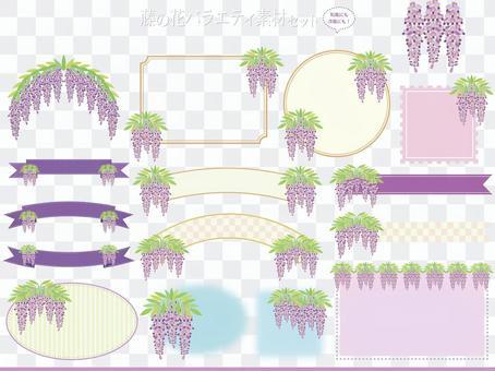 紫藤花品種多樣化框架材料集