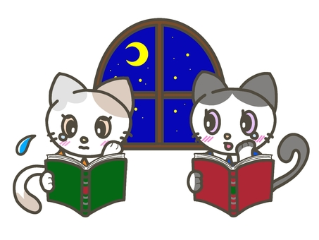 秋夜長貓看書哭