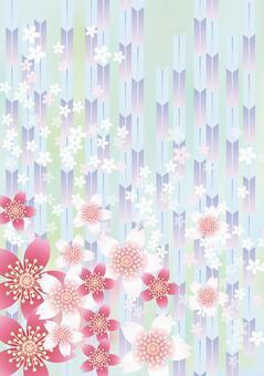Sakura no Hana&Yabu 3