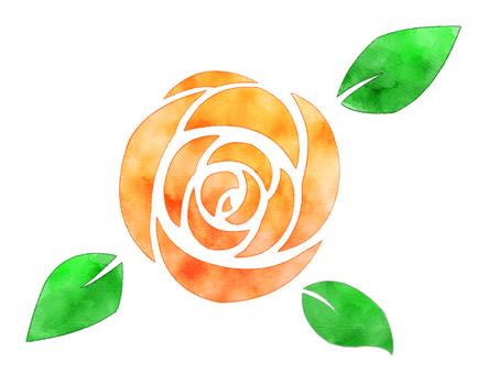 水彩風格玫瑰橙
