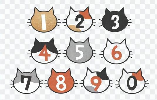 貓類型編號集