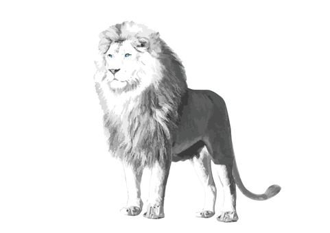 White Lion Beast King Real