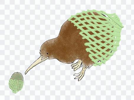 獼猴桃帶防護網