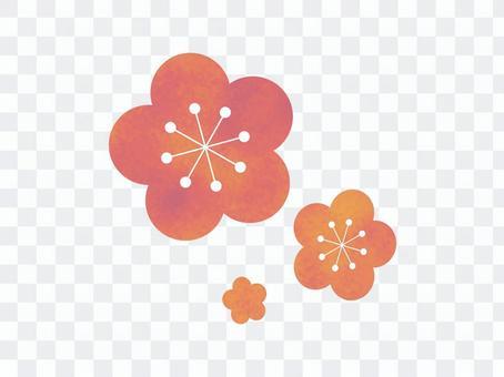 Yume可愛的梅花