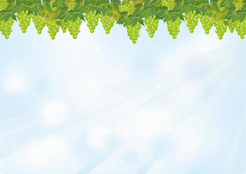 青空與葡萄15