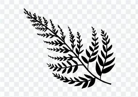 Monochrome fern plant
