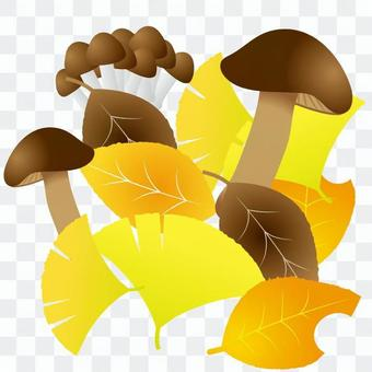 고엽제와 버섯