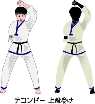 跆拳道武術吹韓國上層