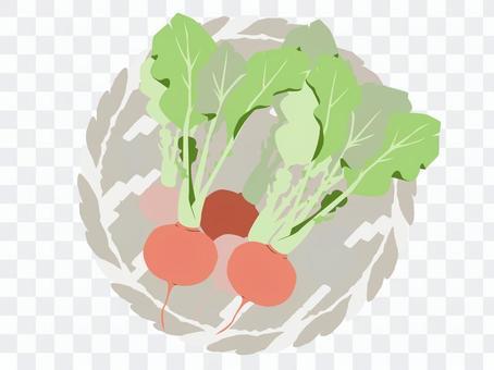 盒裝蔬菜13蘿蔔