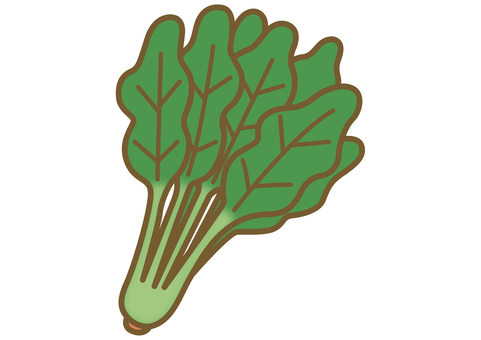 Illustration of cute spinach