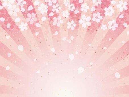 Celebration Sakura Japanese paper radiation background 02
