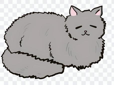 貓灰色午睡