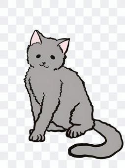 猫 グレーヘア 全身 ゆるかわ