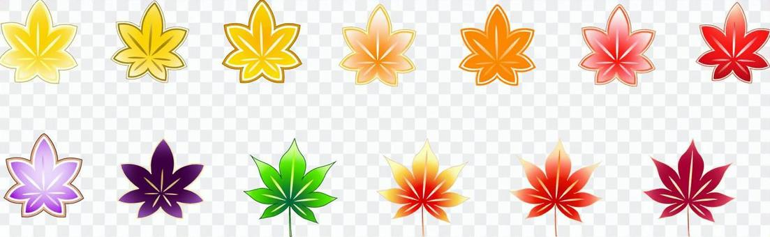 秋天的樹葉