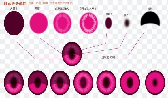 眼睛顏色分解圖