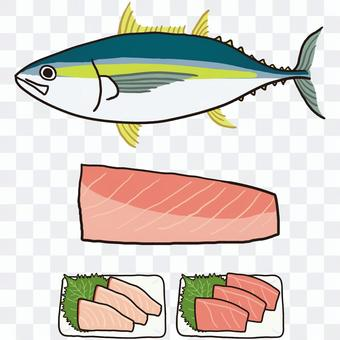 Yellowfin tuna whole body fillet sashimi