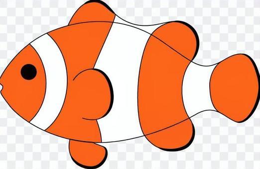 Tropical fish _ clown ferns