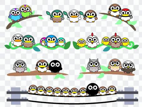 各種鳥類,包括鴨子,框架隔板