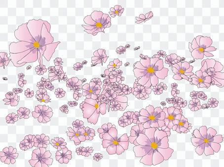 Kosumo 14