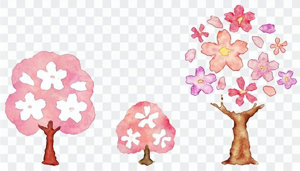 Watercolor painting of cherry blossoms and cherry blossoms and cherry blossom petals