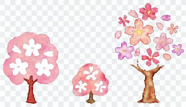 櫻花,櫻花和櫻花花瓣的水彩畫