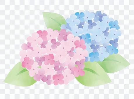 水彩繡球花02