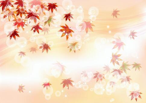 가을 무늬 단풍 5