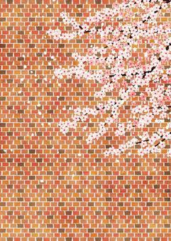 水彩磚牆和櫻花背景水平