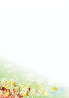 秋葉和銀杏49