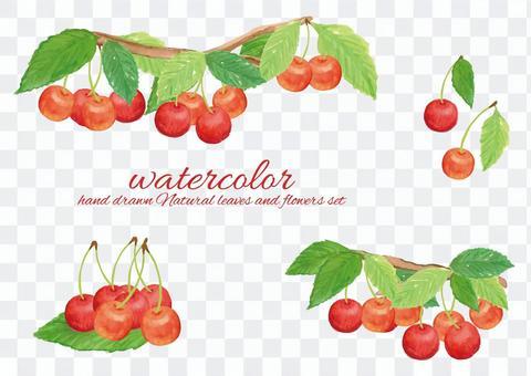 水彩櫻桃2