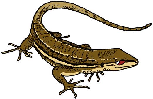 Kana Snake