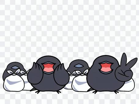 烏鴉食物GET
