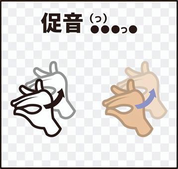 手指拼寫(手語)sokuon