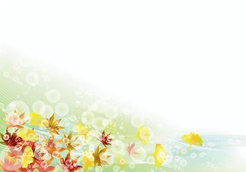 秋葉和銀杏48