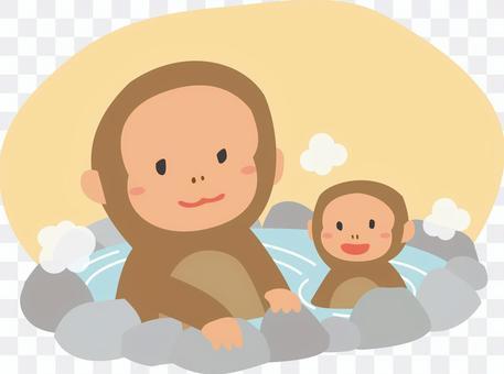 Hot spring monkey