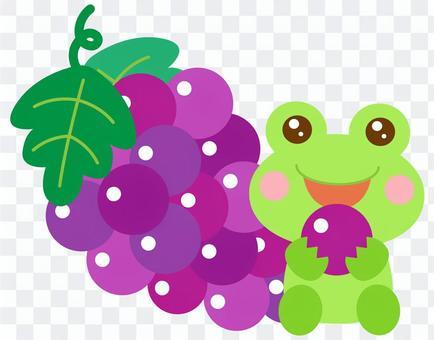 ぶどうを食べる カエル 蛙