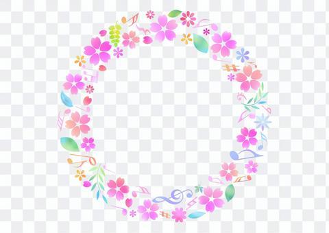 Cherry blossoms 299