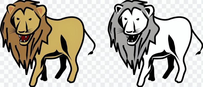 Lion beast carnivorous menacing barking