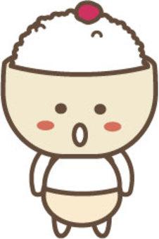 李子米飯的特點2