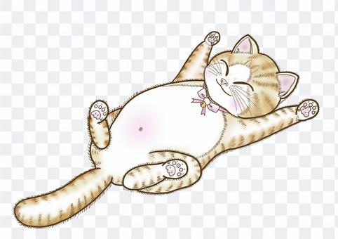 猫がリラックスしているイラスト