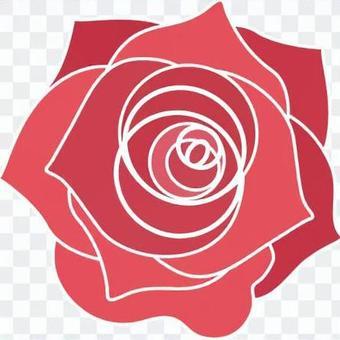 【要求】玫瑰分開