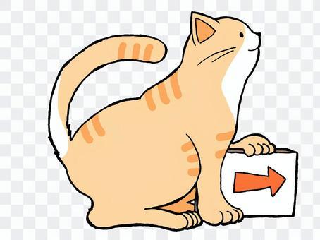 猫素材:矢印案内(右)