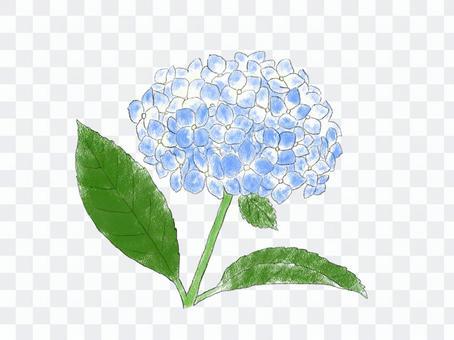 繡球01藍色